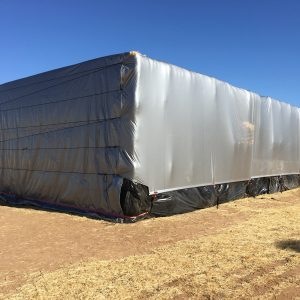 Custom Large Tarp