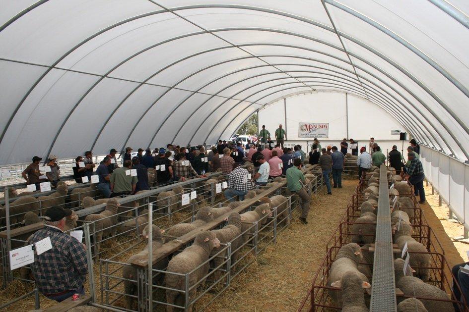 Ag Shelter used for Ram Sale